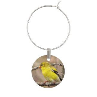 Goldfinch Wine Charm