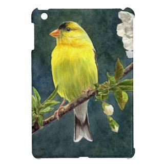 Goldfinch y flores de cerezo