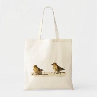 Goldfinch y pino Siskin