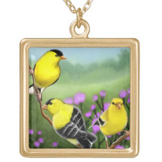 Goldfinches americanos en collar de los cardos
