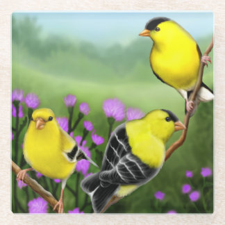 Goldfinches in Thistle Flowers Glass Coasters