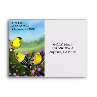 Goldfinches in Thistles Envelope