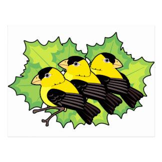 goldfinches tarjeta postal