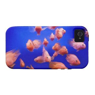 Goldfish 2 iPhone 4 covers