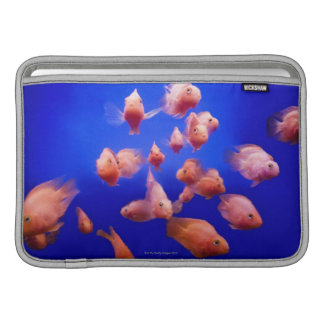 Goldfish 2 MacBook air sleeve