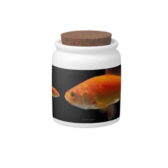 Goldfish 3 candy dishes