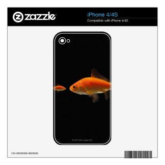 Goldfish 3 iPhone 4 decals