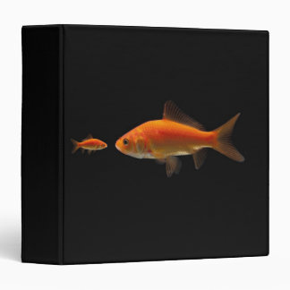 Goldfish 3 vinyl binders