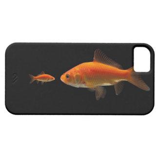 Goldfish 4 iPhone 5 covers