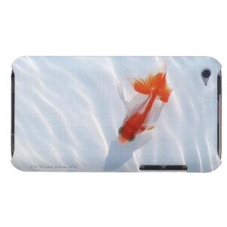 Goldfish 5 barely there iPod covers