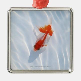 Goldfish 5 christmas tree ornament