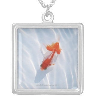Goldfish 5 collar plateado