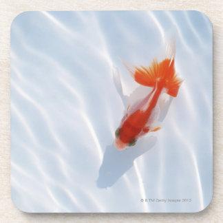 Goldfish 5 drink coasters