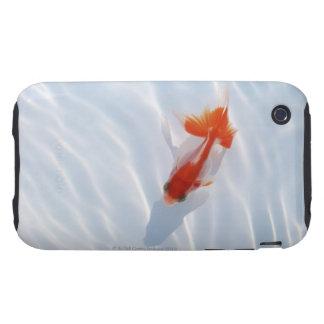 Goldfish 5 iPhone 3 tough cases
