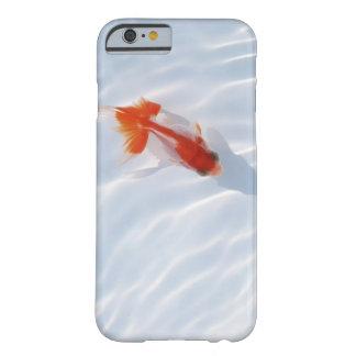 Goldfish 5 iPhone 6 case