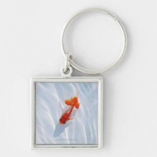 Goldfish 5 key chains