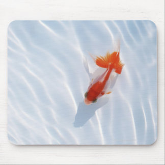 Goldfish 5 mouse pad