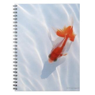 Goldfish 5 spiral notebook