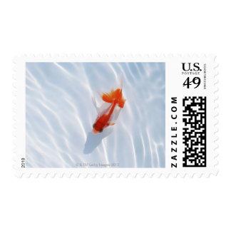 Goldfish 5 stamps