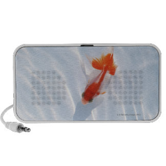 Goldfish 5 travel speaker