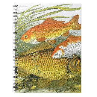 Goldfish acuático Koi, pescado marino del vintage Spiral Notebook