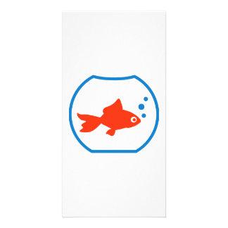 Goldfish aquarium photo card