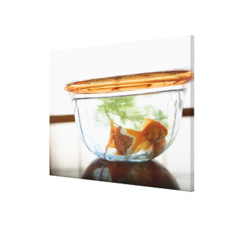 Goldfish bowl canvas print