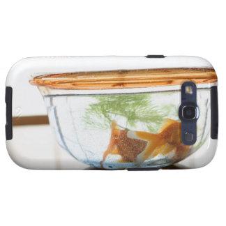 Goldfish bowl galaxy s3 cases
