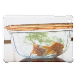 Goldfish bowl iPad mini cover