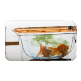 Goldfish bowl iPhone 3 Case-Mate cases