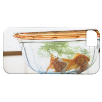 Goldfish bowl iPhone SE/5/5s case
