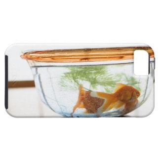 Goldfish bowl iPhone SE/5/5s case