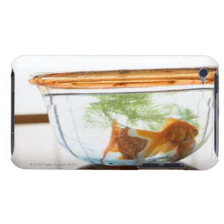 Goldfish bowl iPod touch cover