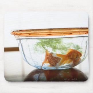 Goldfish bowl mouse pad
