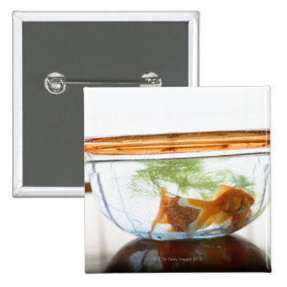 Goldfish bowl pinback buttons