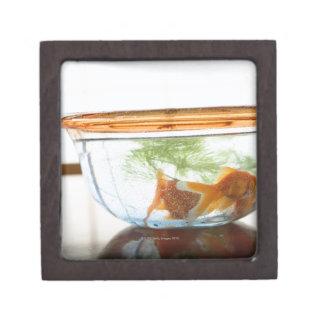 Goldfish bowl premium trinket box