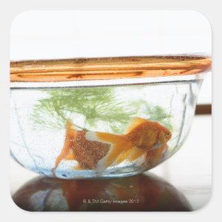 Goldfish bowl square sticker