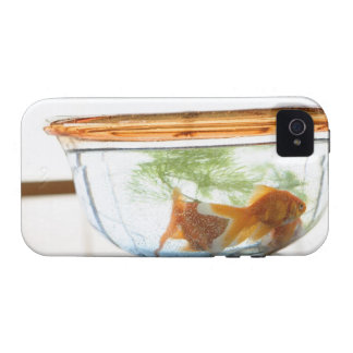 Goldfish bowl vibe iPhone 4 covers