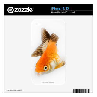 Goldfish (Carassius auratus) Decals For iPhone 4S