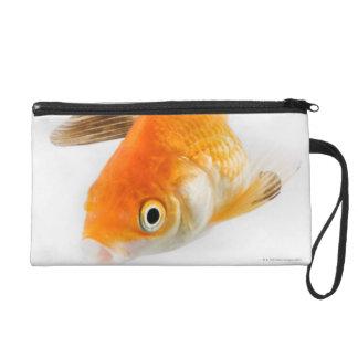 Goldfish (Carassius auratus) Wristlet