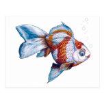 Goldfish con las burbujas postal