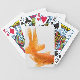 Goldfish de la cola de milano (auratus del Carassi Baraja