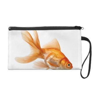 Goldfish de lujo