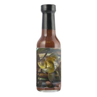 Goldfish de lujo de la cola de milano salsa picante