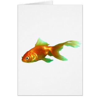 Goldfish de lujo del oranda de la cola felicitaciones