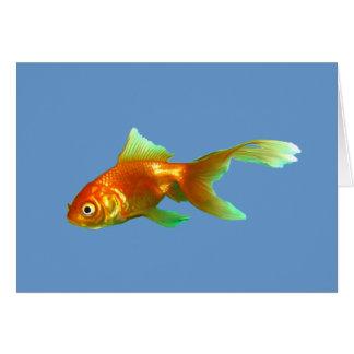 Goldfish de lujo del oranda de la cola tarjeton