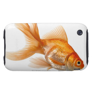 Goldfish de lujo iPhone 3 tough carcasas