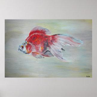 Goldfish de Ryukin Posters