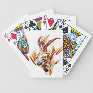 Goldfish del cometa de la cola de milano del calic barajas de cartas