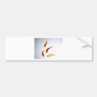 goldfish del underwatter etiqueta de parachoque